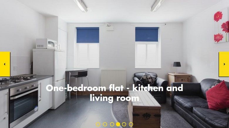 One-bedroom flat - kitchen and living room.jpg
